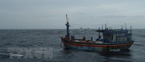 Rescatan a tres pescadores de la provincia vietnamita de Binh Dinh a la deriva en el mar hinh anh 1