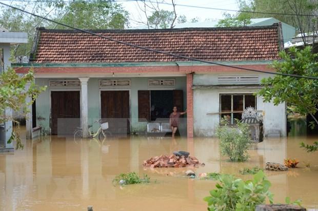 Asisten a localidades vietnamitas afectadas por inundaciones en saneamiento ambiental hinh anh 1