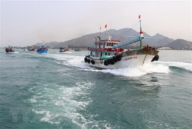 Provincia vietnamita de Tien Giang se esfuerza por prevenir la pesca ilegal hinh anh 1