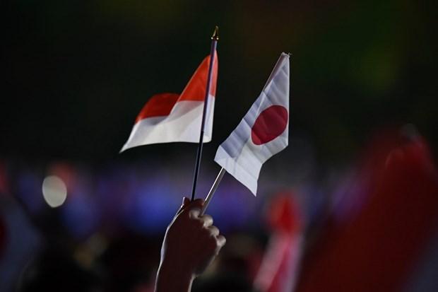 Japon e Indonesia fortalecen la cooperacion en defensa hinh anh 1