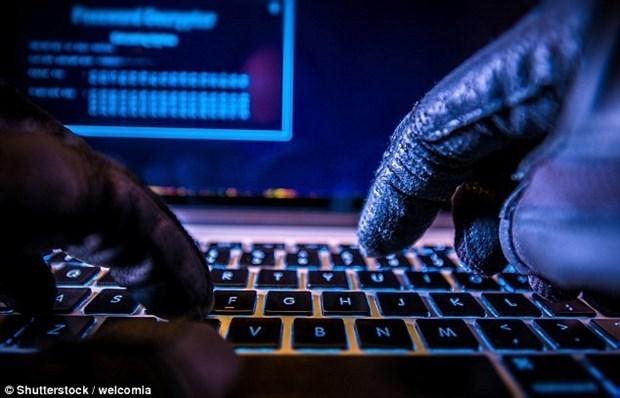 Vietnam registra cerca de 600 ataques ciberneticos en octubre hinh anh 1