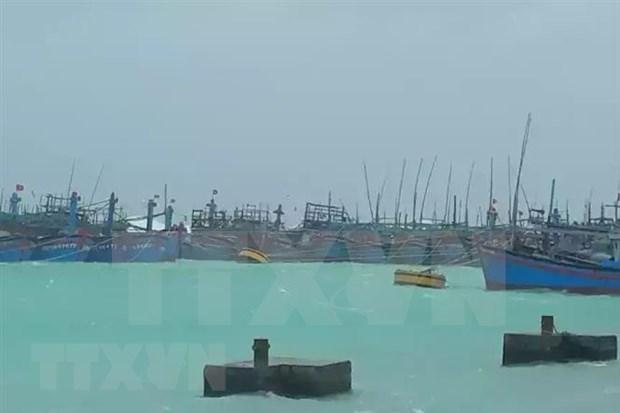 Exhortan en Vietnam a controlar y garantizar seguridad de barcos ante supertifon Goni hinh anh 1