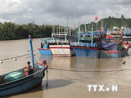 Tifon Goni avanza hacia la costa vietnamita hinh anh 1