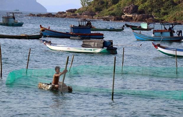 Vietnam promueve la cooperacion internacional para el desarrollo de economia maritima hinh anh 1