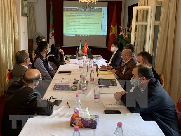 Impulsan intercambio entre Vietnam y Argelia hinh anh 1