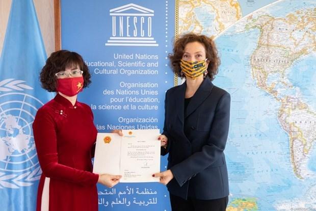 Vietnam y UNESCO por promover la cooperacion bilateral hinh anh 1