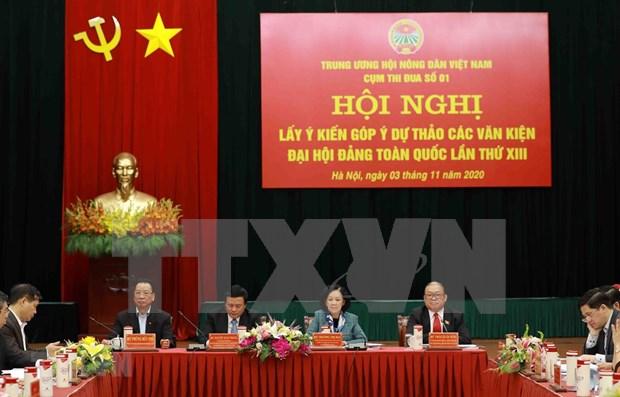 Continuan los debates sobre documentos del XIII Congreso Nacional del Partido Comunista de Vietnam hinh anh 1