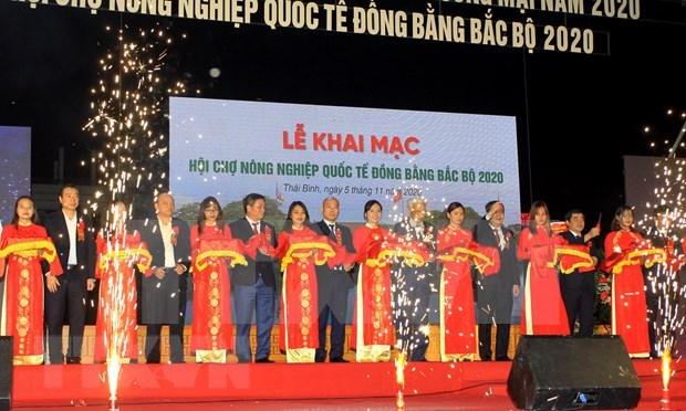 Inauguran Feria de Agricultura Internacional en provincia vietnamita de Thai Binh hinh anh 1