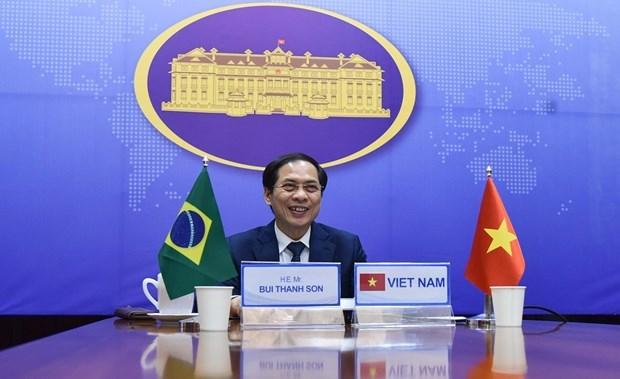 Brasil, mayor socio comercial de Vietnam en America Latina y con record de transacciones hinh anh 1