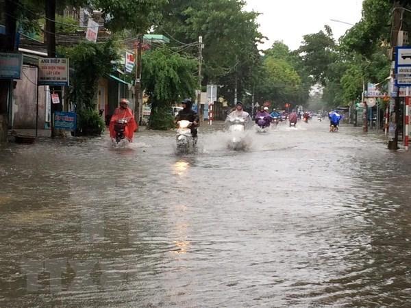 Duodecimo tifon avanza hacia la costa de Vietnam hinh anh 1