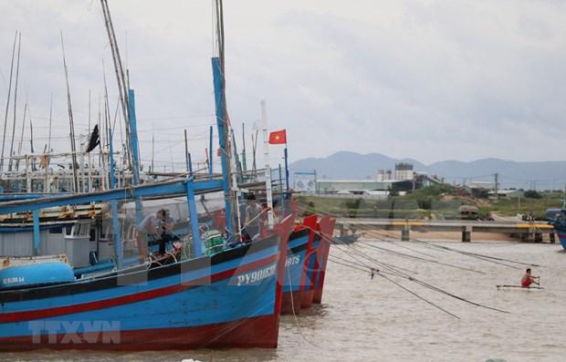 Tormenta Vamco se aproxima a la costa vietnamita hinh anh 1