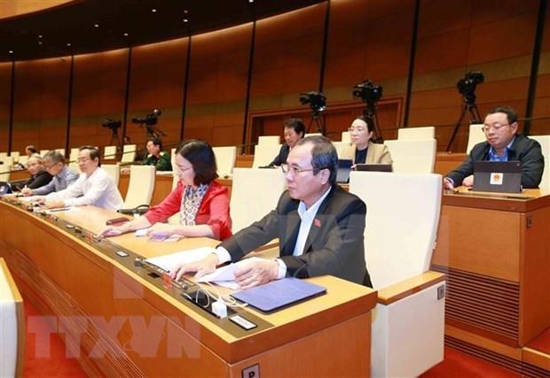 Asamblea Nacional de Vietnam adopta Resolucion sobre Plan presupuestario 2021 hinh anh 1