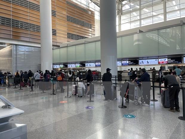 Regresan a tierra natal mas de 340 ciudadanos vietnamitas en Japon hinh anh 1