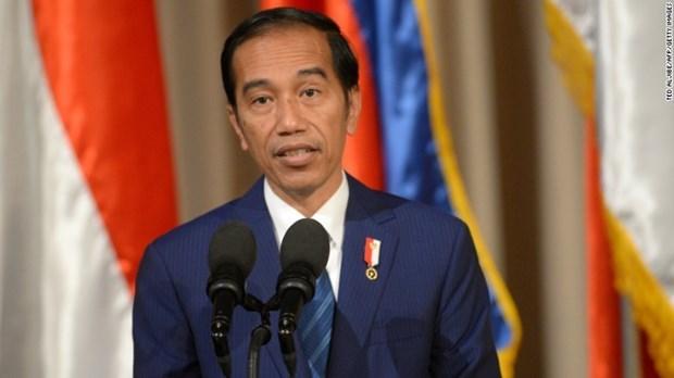 Presidente de Indonesia proponen medidas para intensificar lazos entre la ASEAN y sus socios hinh anh 1
