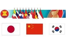 Promueven ASEAN+3 la cooperacion interbancaria hinh anh 1