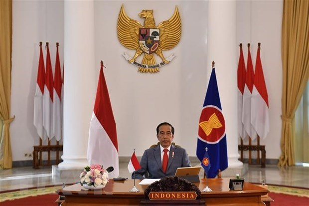 Propone Indonesia que ASEAN + 3 establezca mecanismo conjunto de seguridad sanitaria hinh anh 1