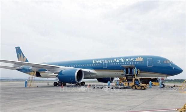 Repatrian a 450 ciudadanos vietnamitas desde Japon hinh anh 1