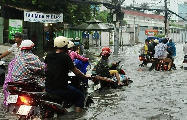 Desastres naturales le cuestan a Vietnam 1,5 por ciento del PIB anual hinh anh 1
