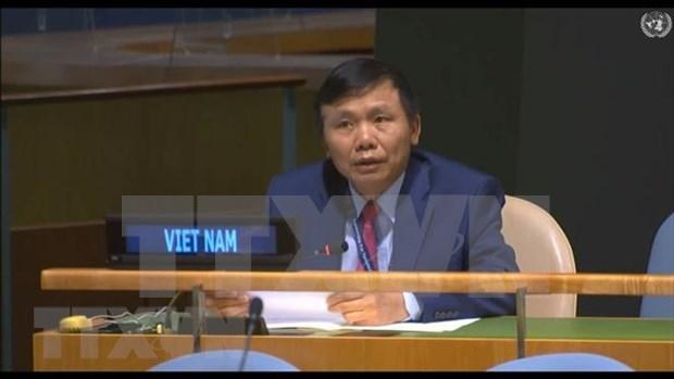 Vietnam apoya ampliacion del Consejo de Seguridad de la ONU hinh anh 1