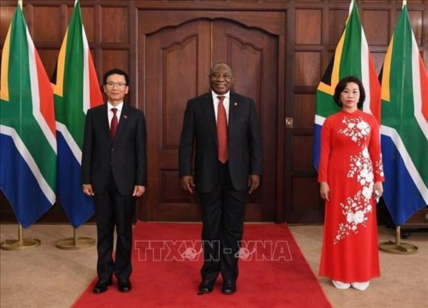 Presenta cartas credenciales embajador de Vietnam en Sudafrica hinh anh 1