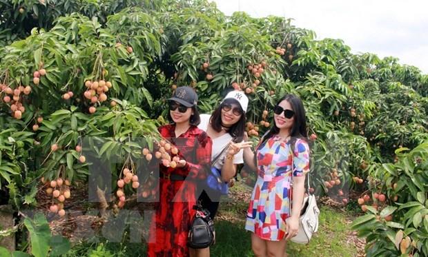 Provincia vietnamita Bac Giang por construir una administracion moderna, profesional y en servicio al pueblo hinh anh 1