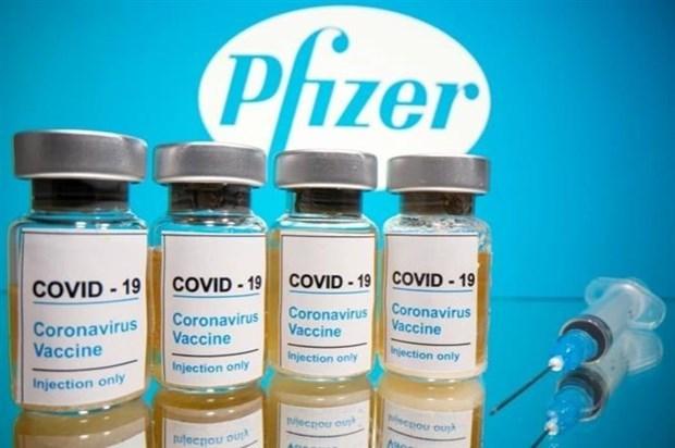 Indonesia coopera con Estados Unidos para desarrollar vacuna contra COVID-19 hinh anh 1