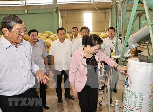 Presidenta del Parlamento vietnamita realiza visita de trabajo a provincia de Soc Trang hinh anh 1