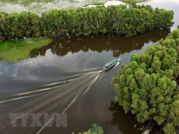 Banco Mundial otorga 400 millones de dolares para rehabilitacion de manglares de Indonesia hinh anh 1
