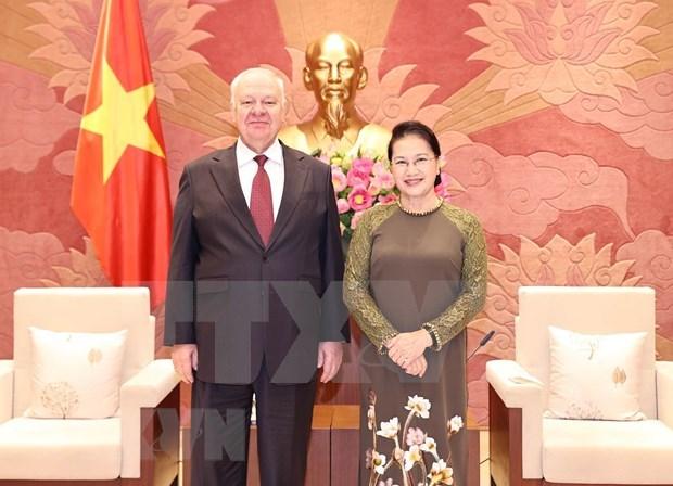 Corroboran vinculos entre Vietnam y Rusia hinh anh 1