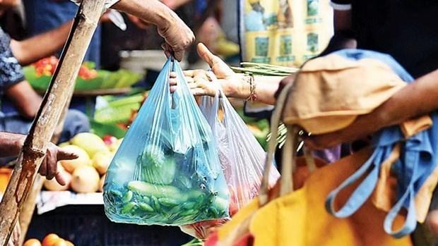 Vietnam preside reunion de tratamiento de residuos plasticos en mares de Asia Oriental hinh anh 1