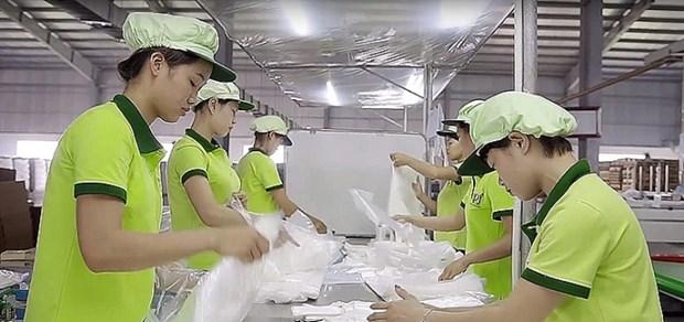Programa 712 apoya al desarrollo socioeconomico de Vietnam hinh anh 1