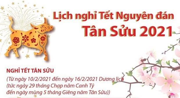 Disfrutaran vietnamitas de una semana de vacaciones por Ano Nuevo Lunar 2021 hinh anh 1