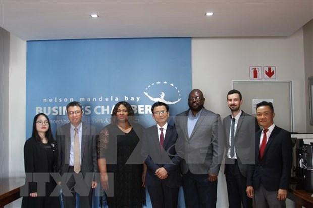 Promueven relacion economica entre Vietnam y Sudafrica hinh anh 1