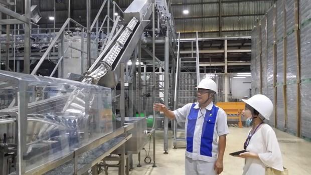 Aumenta inversion vietnamita en el extranjero hinh anh 1