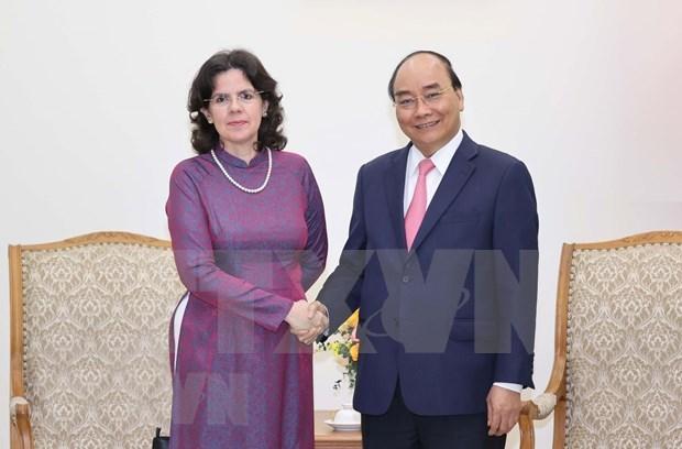 Primer ministro de Vietnam recibe a embajadora cubana hinh anh 1