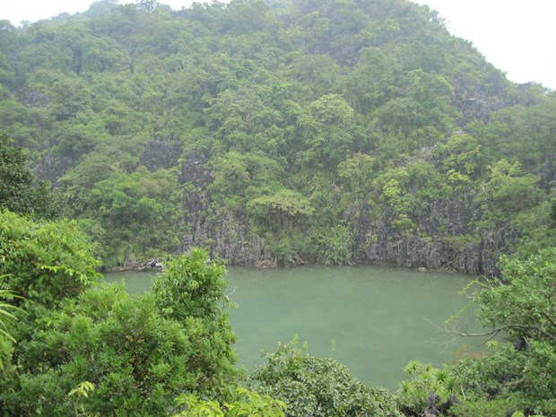 Descubra el Parque Nacional Bai Tu Long en Vietnam hinh anh 1