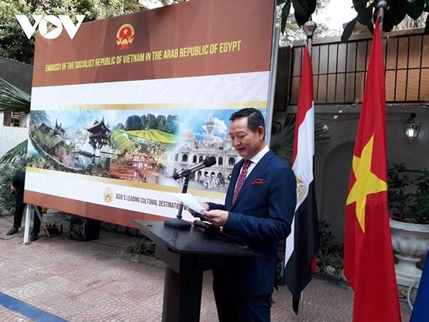 Divulgan valores culturales vietnamita en Egipto hinh anh 1
