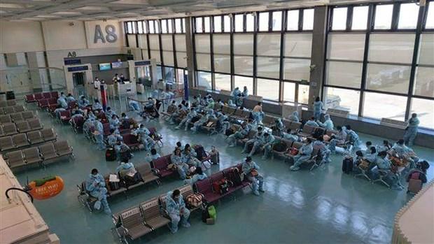 Organiza Vietnam vuelos para repatriar connacionales desde extranjero hinh anh 1