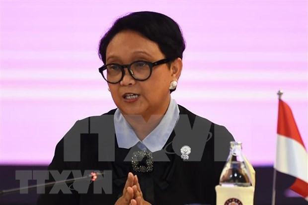 Indonesia pide a UE trato justo a sus productos de aceite de palma hinh anh 1