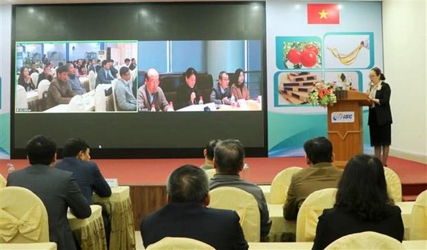 Efectuan teleconferencia de tecnologia y equipos entre empresas vietnamitas y chinas hinh anh 1
