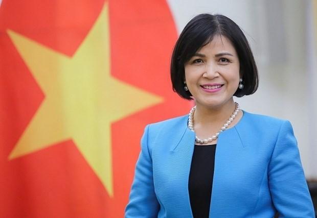 Promueve Vietnam cooperacion internacional en el desminado humanitario hinh anh 1