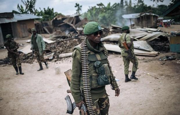 Vietnam dispuesto a respaldar a los paises de Africa que salen de conflictos hinh anh 1
