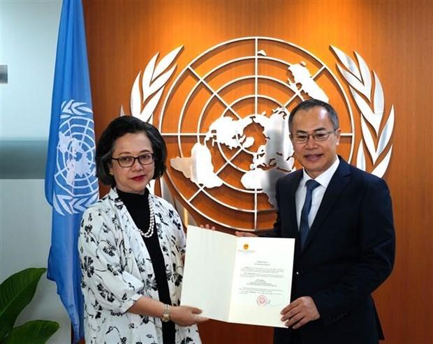 Aprecia organo de ONU avances de Vietnam en impulso de desarrollo sostenible hinh anh 1