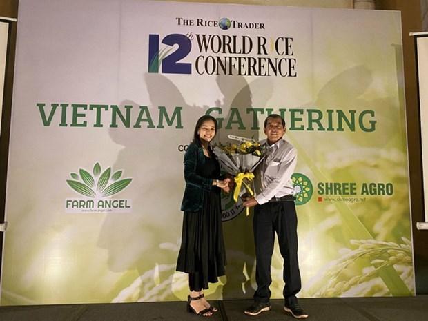 Gana variedad de arroz vietnamita premio en concurso internacional hinh anh 1