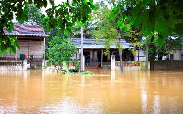 Agencia de la ONU recauda fondos para vietnamitas afectados por inundaciones hinh anh 1