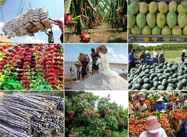 Aspira Vietnam a ingresar 41 mil millones de dolares por exportaciones agro-forestales y acuicolas en 2020 hinh anh 1