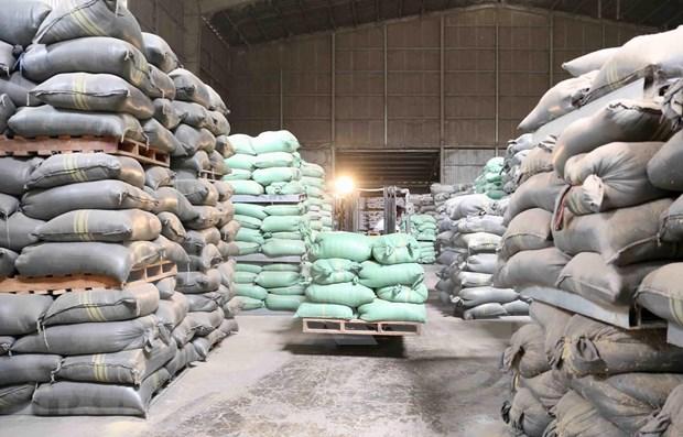 Mejoran calidad y competitividad del arroz de Vietnam hinh anh 1