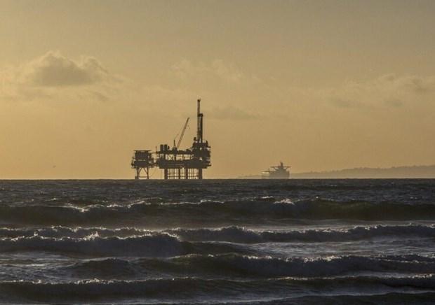 Japon e Indonesia firman memorando sobre comercio de gas hinh anh 1