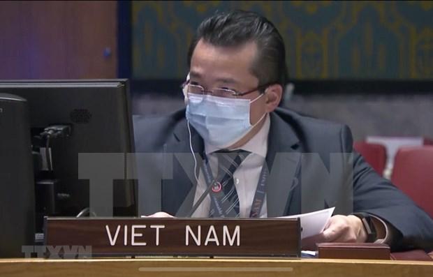 Vietnam expresa preocupaciones sobre espiral de violencia en la Republica Democratica del Congo hinh anh 1