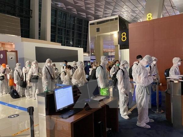 Repatrian a 350 vietnamitas de Emiratos Arabes Unidos y la India hinh anh 1